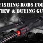 Best Fishing Rods For Bass